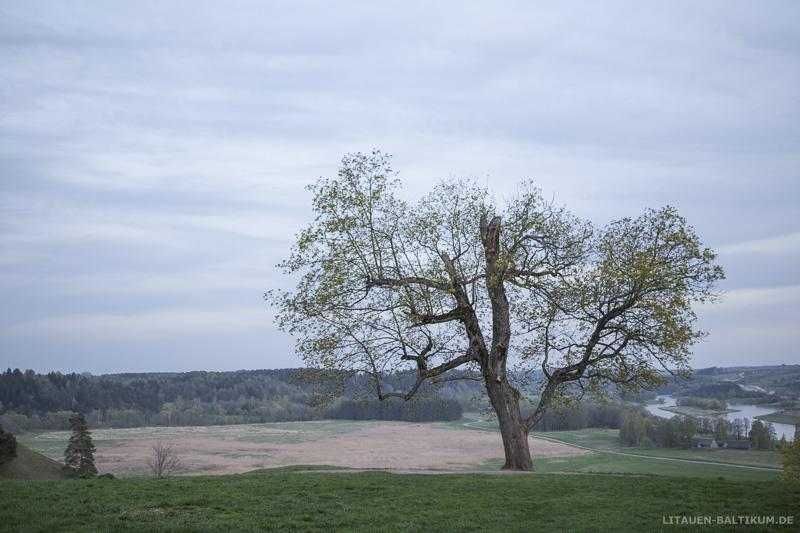 Kernavė – Kulturreservat und Welterbe: Landschaft