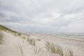 Kurische Nehrung: Sandstrand und Strandgras